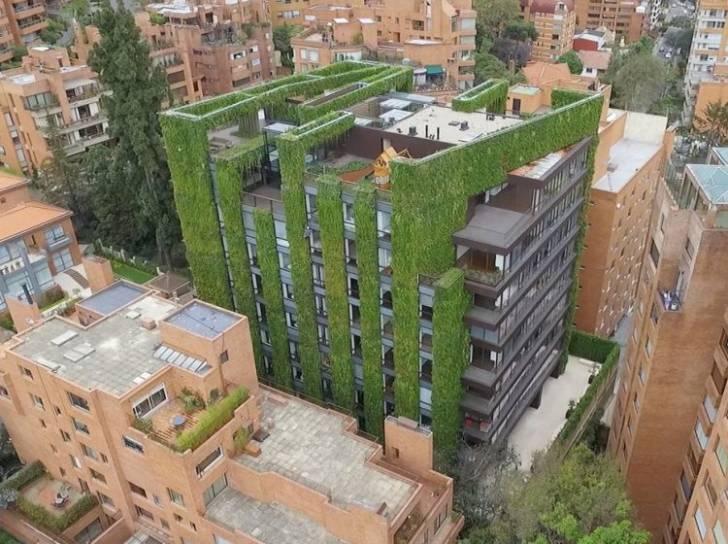 Bogota'daki Bu Yaşayan Bina, Dünyanın En Büyük Dikey Bahçesi
