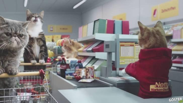 Klasikleşmiş Viral Videolardaki Kedilerin Başrolde Oynadığı Alman Süpermarket Reklamı
