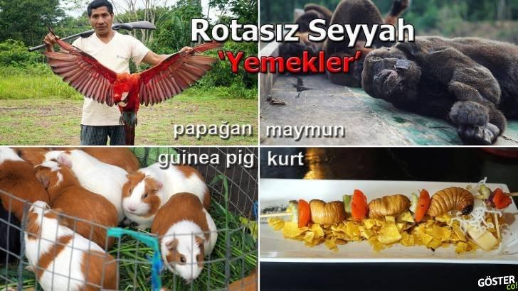 Dünyayı Gezerken Maymun, Kaplumbağa Yumurtası Gibi Her Gördüğünü Yiyen Türk Gezgin
