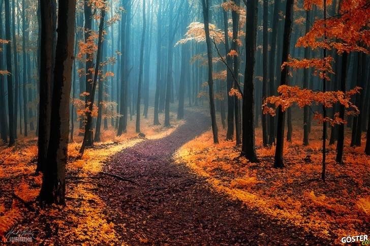 Dünya'nın dört bir yanından, yürümek için can atacağınız 28 doğa harikası patika