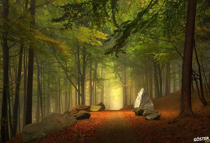 amazing-paths-25