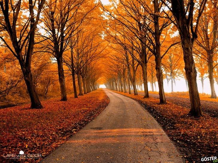 amazing-paths-30