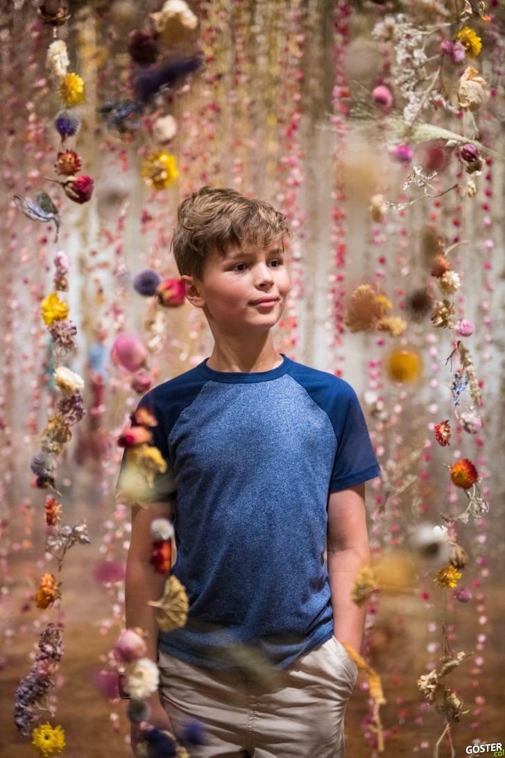 Bu Sanat Müzesi'nde 500.000'in Üzerinde Yerel Çiçek Korumaya Alındı