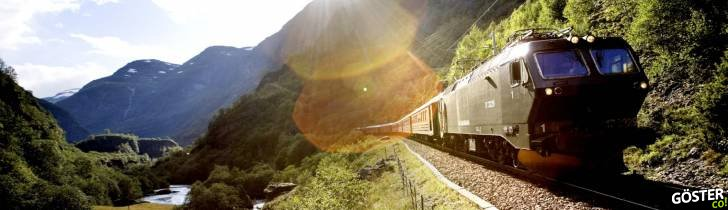 A train passing through a scenic valley in Flåm