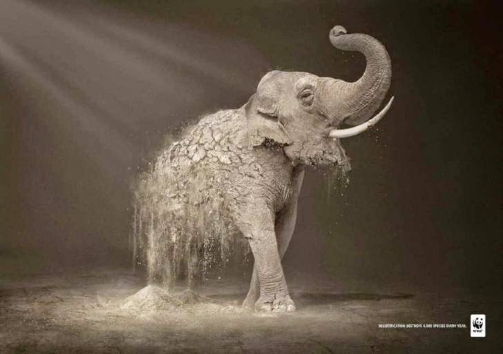 Inspirational Ad- World Wildlife Fund
