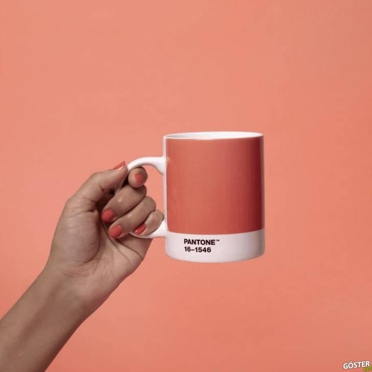 Pantone'un, yılın rengi (pembenin bir tonu) için tasarladığı kahve kupası