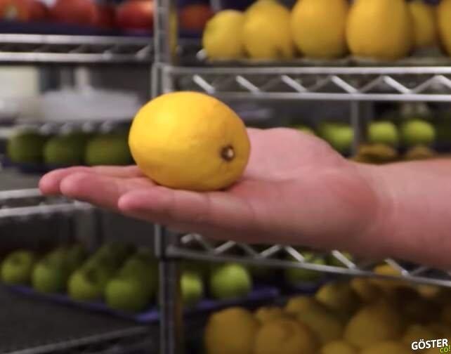 Meyve sebzeyi daha uzun ömürlü kılacak bir sıvı geliştirildi: Yılda 1,3 milyar ton gıda çöpe gidiyor