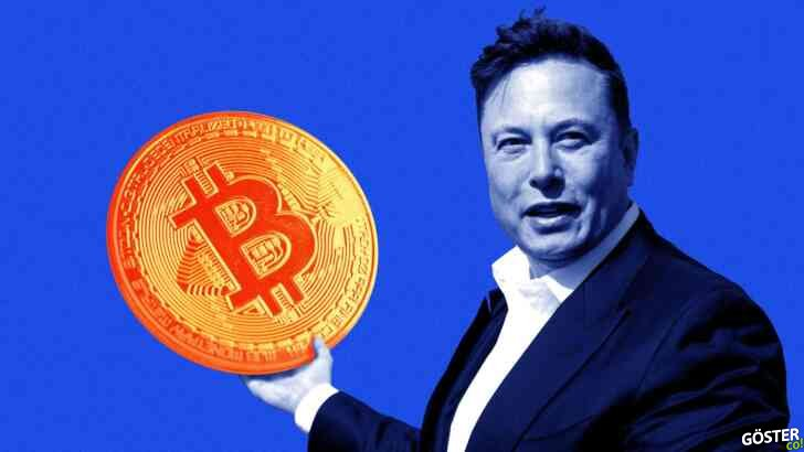 Elon Musk, Bitcoin hakkında tweetleyince BTC satın alan bot geliştirildi